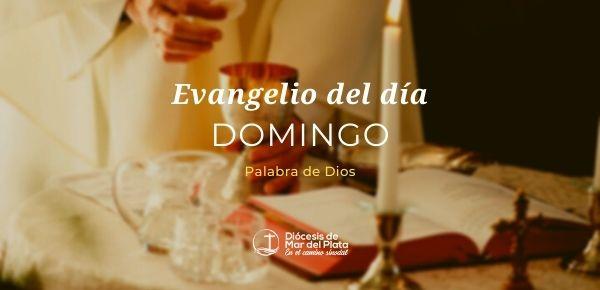 Evangelio según San Juan 6,24-35.