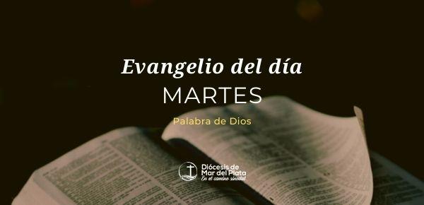 Evangelio según San Juan 3,7b-15.