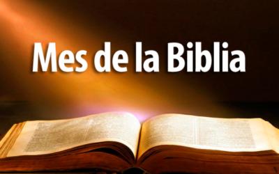 CONFERENCIAS: BIBLIA Y VIDA.